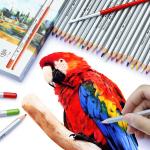 สีไม้ระบายน้ำ Marco Raffine 48 สี รุ่น 7120 Aquarelle Pencils เกรด Professional กล่องกระดาษ (พร้อมส่ง)