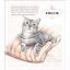 หนังสือสอนระบายสีไม้ ภาพแมว สอนลงสีขน (พร้อมส่ง) thumbnail 5