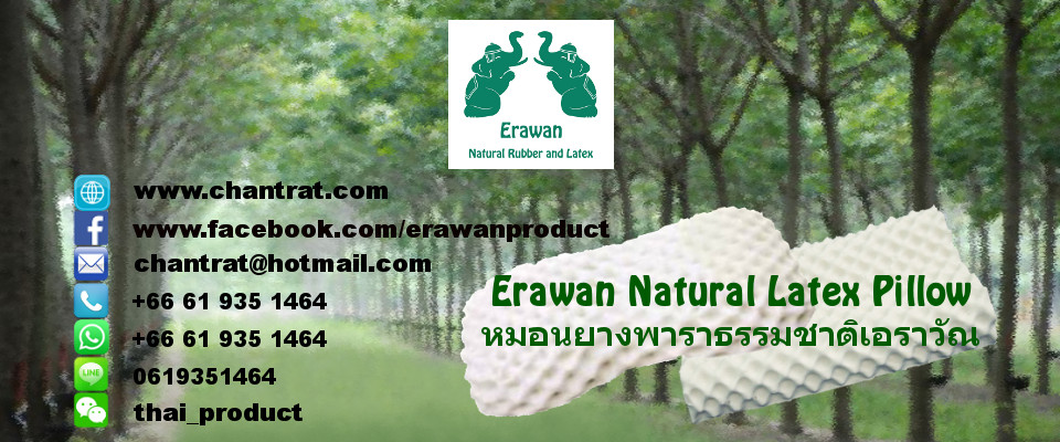 Erawan 100% Natural Latex Pillow and Mattress