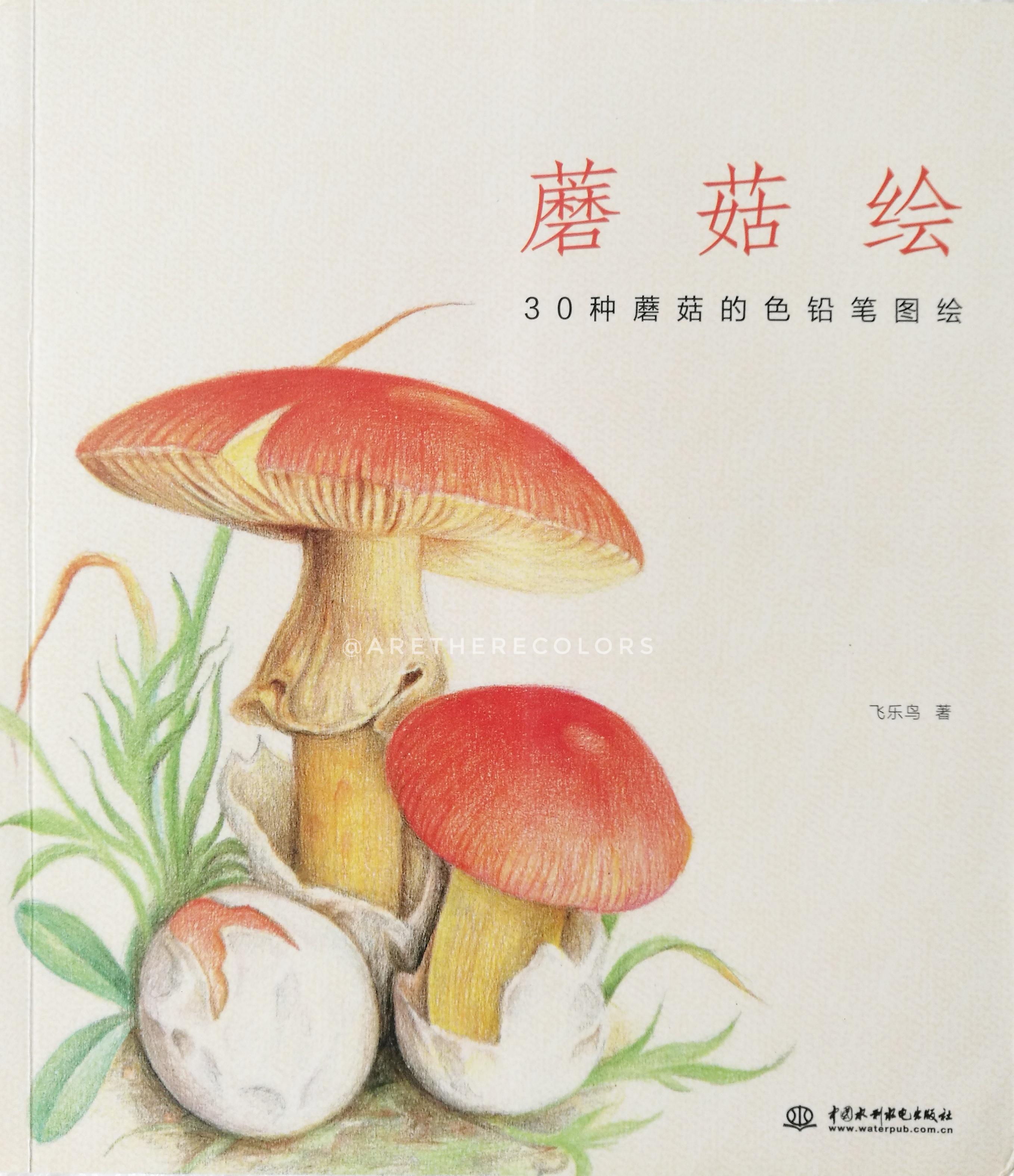 (พร้อมส่ง) หนังสือสอนวาดภาพระบายสีไม้ รูปเห็ดน่ารักๆ