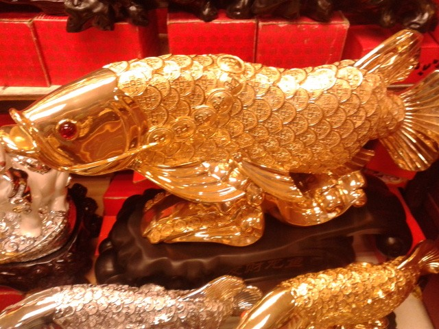 ปลาหลี่ฮื้อเกล็ดเหรีญทอง เหลือกินเหลือใช้ ค้าขายร่ำรวย