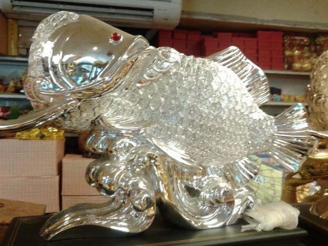 ปลาหลี่ฮื้อเกล็ดเหรียญเงิน เหลือกินเหลือใช้