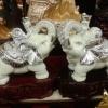 ช้างมงคล ประสบความสำเร็จในกิจการนักแน่นมั่นคง