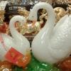 นกเป็ดน้ำคู่รักนำโชค