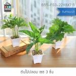 ต้นไม้ปลอม ต้นไม้แต่งบ้าน ดอกไม้พลาสติก ต้นไม้พลาสติก ดอกไม้ประดิษฐ์ (เซ็ต 3 ชิ้น) ขนาด 8.5x8.5x29 CM. รุ่น B55-FG3-22X8X7.5