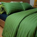 ชุดผ้าปูที่นอนโรงแรมลายริ้ว 6 ฟุต (5 ชิ้น) สีเขียว