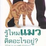 รู้ไหมแมวคิดอะไรอยู่?