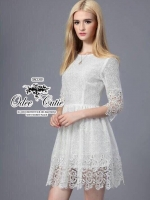 Lace Embroidered mini dress