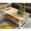 CASSA โต๊ะกลาง วางหน้าโซฟา รับแขก พร้อมลิ้นชักในตัว ขนาด120X60ซม. thumbnail 11
