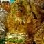 เจ้าแม่กวนอิมปางประธานพรประทับใบบัว thumbnail 3