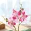 ต้นไม้ปลอม ต้นไม้แต่งบ้าน ดอกไม้พลาสติก ต้นไม้พลาสติก ดอกไม้ประดิษฐ์ (ต้นกล้วยไม้) ขนาด 9.5x8x19 CM. thumbnail 6