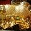 ปลาหลีฮื้อเกล็ดเหรียญมงคลนำหยู่อี่ อุดมสมบูรณ์ ร่ำรวยเงินทองเหลือกินเหลือใช้สมปรารถนา thumbnail 2