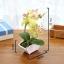 ต้นไม้ปลอม ต้นไม้แต่งบ้าน ดอกไม้พลาสติก ต้นไม้พลาสติก ดอกไม้ประดิษฐ์ (ต้นกล้วยไม้) ขนาด 14x6x22 CM. thumbnail 4