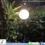 โคมไฟสนาม โซล่าเซลล์ รุ่น Crystal Ball ทรงกลม พรีเมียม thumbnail 6
